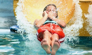 The Beach: Water-Park Admission, Zipline Passes, and Sodas for Two or Four at The Beach (Up to 53% Off)