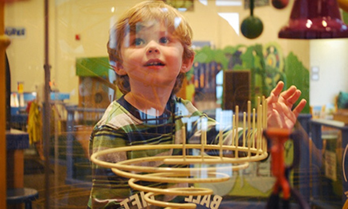 WonderLab Museum of Science, Health & Technology - Bloomington: One Day at WonderLab Museum of Science, Health & Technology for Two or Four (Half Off)