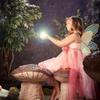71% Off Fairy Portrait Package