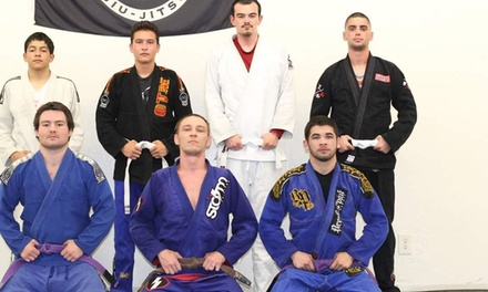 Two Weeks of Unlimited Martial Arts Classes at Graciefighter Manteca (50% Off)