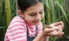 EcoAdventures - Millersville: One or Three 60-Minute Enrichment Sessions for One or Two Kids at EcoAdventures (Up to 47% Off)