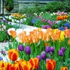 Up to 53% Off Home & Garden Show Visits