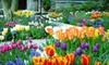 D&D Expositions - Greater Philadelphia Expo Center: One-Day Visit for Two or Four to the Suburban Home & Garden Show on February 22–24 from D&D Expositions (Up to 53% Off)