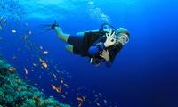 Bautismo de buceo para 1, 2 o 4 desde 24,95 € o curso ACUC Scuba Diver de iniciación al buceo por 179 € en CBS GlupGlup