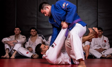 5 or 10 Brazilian Jiu Jitsu Classes at Hip-Hop Chess Federation (Up to 69% Off)