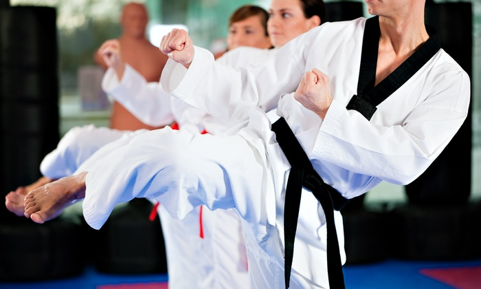 Mason Park's TaeKwonDo - Mason: 1 or 2 Months of Tae Kwon Do Classes with Uniform, or Birthday Party at Mason Park's TaeKwonDo (Up to 87% Off)