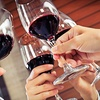 Up to 51% WineFest 2012 for Two