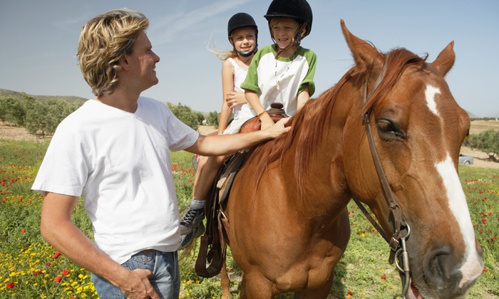 Cliffwood Farm - Richmond: $22 for $40 Worth of Services at Cliffwood Farm