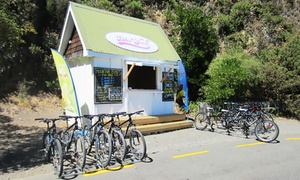 The Bike Shed Pencarrow: Two-Hour Mountain Bike Hire for One ($18), Two ($34) or Four ($60) with The Bike Shed Pencarrow (Up to $120 Value)