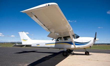 Introductory Flight Lesson at Danny Waizman Flight School And Aircraft Rental (Up to 71% Off). Three Options Available.