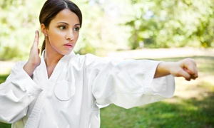 Center for Aikido & Tang Soo Do Studies: One- or Three-Month Membership for Adult or Kids at Center for Aikido & Tang Soo Do Studies (Up to 82% Off)