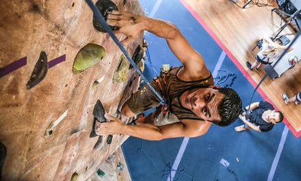 Intro to Rock-Climbing Class for One or Two at Rockreation (Up to 47% Off)