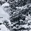 $10 for Snowboard Film Festival