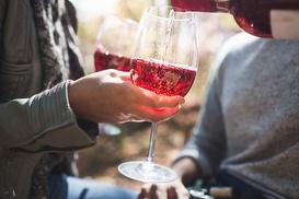 Au Fil des Vins: Découverte des vignoble de St-Joseph et l'Hermitage ou de la Vallée du Rhône pour 1 ou 2 dès 39,90€ chez Au Fil des Vins