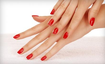 Shellac Manicure (a $35 value) - Mia Bella Salon and Spa in Tucson