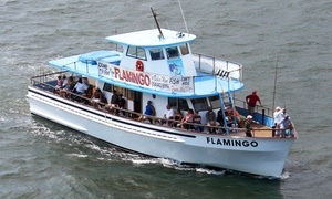 Flamingo Fishing: $28 for a Four Hour-Deep Sea Fishing Trip from Flamingo Fishing ($40 Value)
