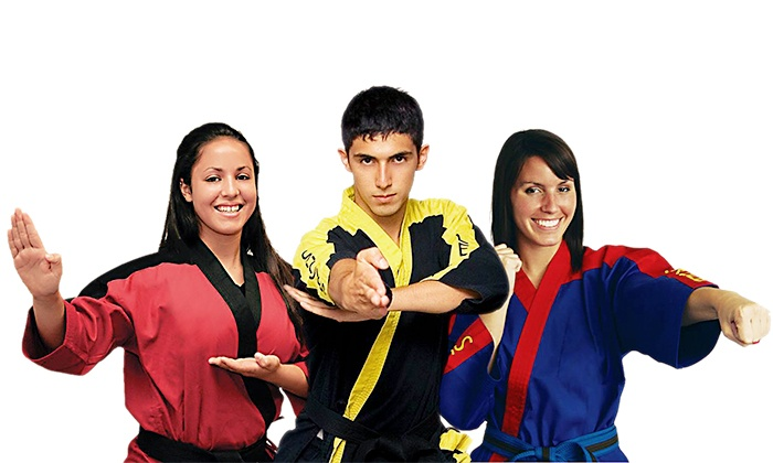 Try Self Defense.com - Multiple Locations: $39 for Six Weeks of Martial Arts Classes and a T-shirt from TrySelfDefense.com ($349 Value)
