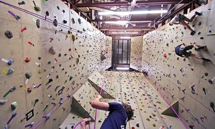 C$40 for One Introductory Climbing Lesson and a 1-Month Pass at The Crux Climbing & Bouldering (C$111.43 Value)