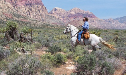 90-Minute Horseback Trail Ride for Two or Four at Las Vegas Trail Riding ( 62% Off)