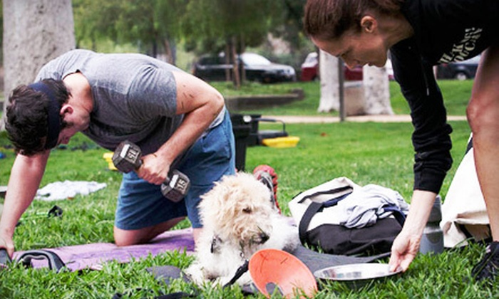 Thank Dog! Bootcamp - Burbank: 4, 8, or 12 Group Dog-and-Owner Boot-Camp Sessions with Dog Obedience Lesson at Thank Dog! Bootcamp (Up to 70% Off)