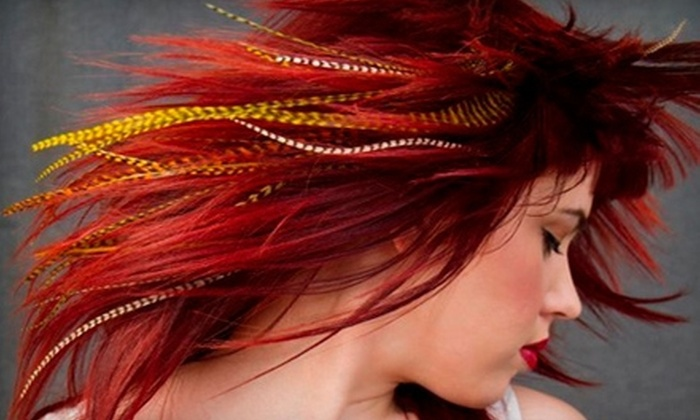 Allure Hair Salon - 441 Corridor: Deep-Conditioning Kérastase Treatment or Feather Hair Extensions at Allure Hair Salon in Hollywood