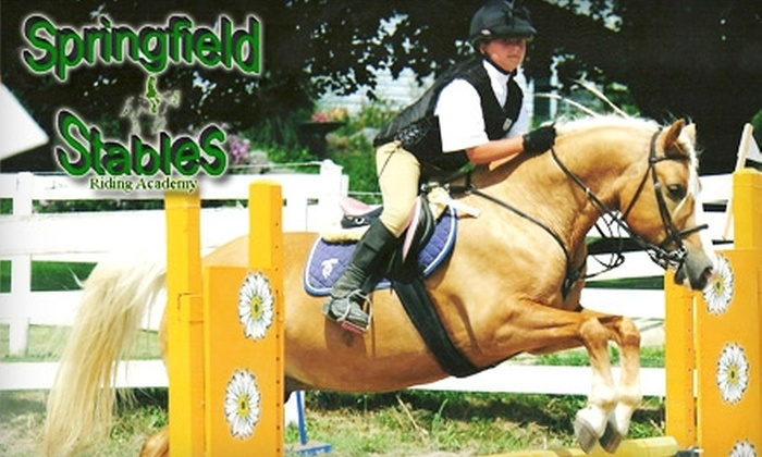 Springfield Stables - Toronto (GTA): $25 for a One-Hour Group Riding Lesson, Including Helmet Rental, at Springfield Stables in Brooklin