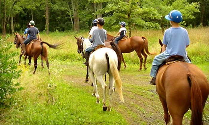 Middleburg Polo Academy - Bluemont: $30 for One-Hour Trail Ride at Middleburg Polo Academy in The Plains ($60 Value)
