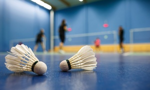 Up to 67% Off Houston Badminton Center Outings or Courses at Houston Badminton Center, plus 6.0% Cash Back from Ebates.
