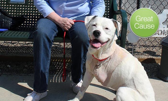 Humane Society for Hamilton County: $10 Donation to Provide Care for Senior Animals