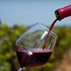 Up to 61% Off Wine Seminar in Shueyville