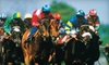 Hollywood Park - Inglewood: Day at the Races for 2, 4, or 10 at Hollywood Park in Inglewood (Up to 55% Off)