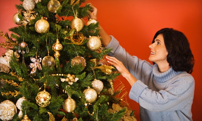 JD Christmas Trees - Hazelwood: $18 for $36 Toward Christmas Trees, Stands, and Wreaths at JD Christmas Trees in Morrisville