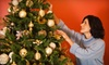 JD Christmas Trees - Hazelwood: $18 for $36 Toward Christmas Trees, Stands, and Wreaths at JD Christmas Trees in Morrisville