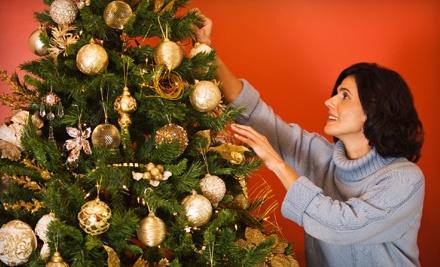 JD Christmas Trees - JD Christmas Trees in Morrisville