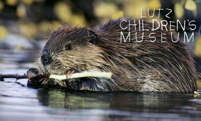 Lutz Children's Museum - Martins: $10 for Admission for Four at Lutz Children's Museum ($20 Value)