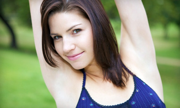 Gentle Touch - Grand Rapids: Six Laser Hair-Removal Sessions on a Small, Medium , or Large Area at Gentle Touch (Up to 89% Off)