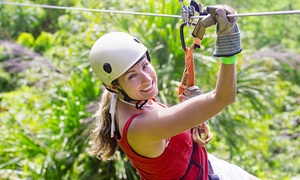 Adventures Unlimited: Up to Three-Hour Taste of The Tours Zipline Excursion for Two or Four from Adventures Unlimited (44% Off)