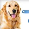 $9 for Two PetZoom Self-Cleaning Brushes