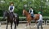 乗馬体験/騎乗30分