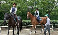癒し・出逢い・感動。初心者のためのお試しコース≪乗馬体験30分/平日限定 or 土日祝限定≫土日OK @乗馬クラブ クレイン千葉