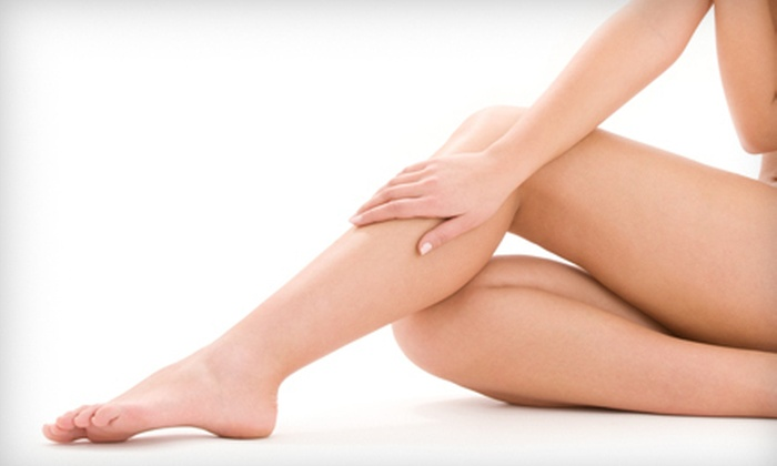 Abby Laser Spa - Clearbrook Commercial: Four Laser Hair-Removal Treatments on a Small, Medium, or Large Areas at Abby Laser Spa (Up to 79% Off)