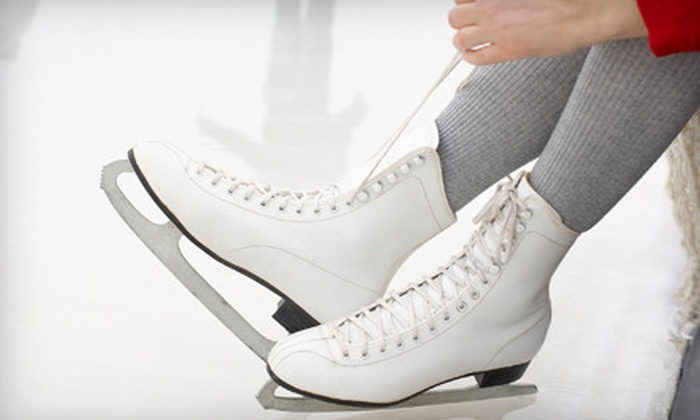 Alpine Ice Arena - Gardiner Lane: $9 for Open Skating, Skate Rental, and Hot Cocoa for Two at Alpine Ice Arena ($20 Value)