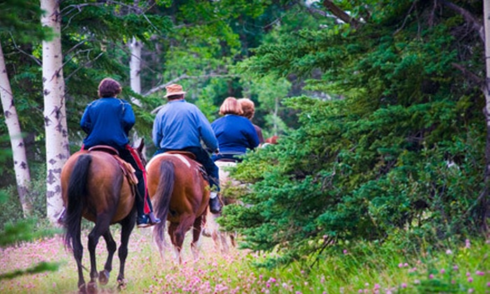 Rocking M Ranch - Garden City: $35 for a Trail Ride for Two at Rocking M Ranch ($80 Value)