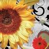53% Off Floral Arrangements