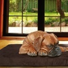 Quilted Suede Orthopedic Dog Bed