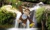 Funny Monkey Stuffed Toy: Funny Monkey Stuffed Toy. Free Returns.