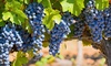 Shady Oaks Country Inn - Saint Helena, CA: One- or Two-Night Stay with a Bottle of Wine and Winery Passes at Shady Oaks Country Inn in Napa Valley, CA