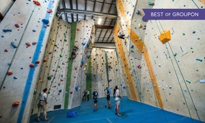 Central Rock Gym - Watertown: $49 for a One-Month Rock-Climbing Package at Central Rock Gym - Watertown ($89 Value)