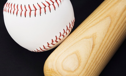 Two or Four 30-Minute Private Baseball or Softball Lessons at The Alamo Academy (Up to 53% Off)