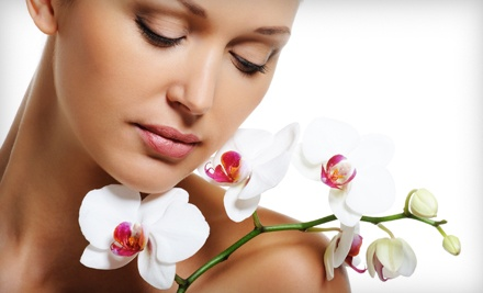 The Sampler Spa Package Including One Half-Hour Swedish Massage, Mini Facial, and Hand-and-Foot Treatment ($125 value) - Facials N Such in Marietta